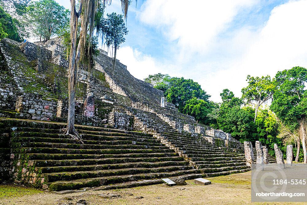Calakmul, UNESCO World Heritage Site, Campeche, Mexico, North America