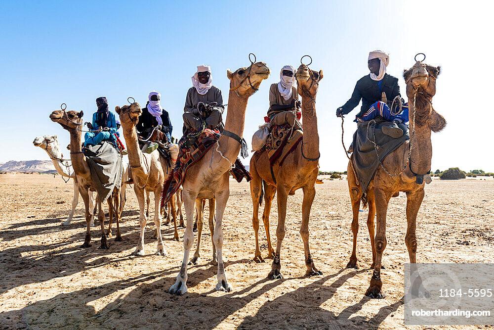 Tuaregs on their camels, Bilma, Tenere desert, Niger, West Africa, Africa