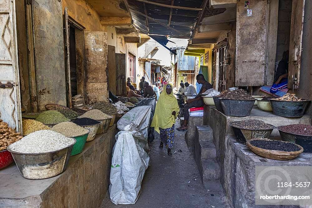 Spices for sale in the bazaar of Kano, Kano state, Nigeria, West Africa, Africa