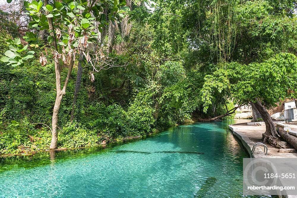 Turquoise Wikki warm springs, Yankari National Park, eastern Nigeria, West Africa, Africa