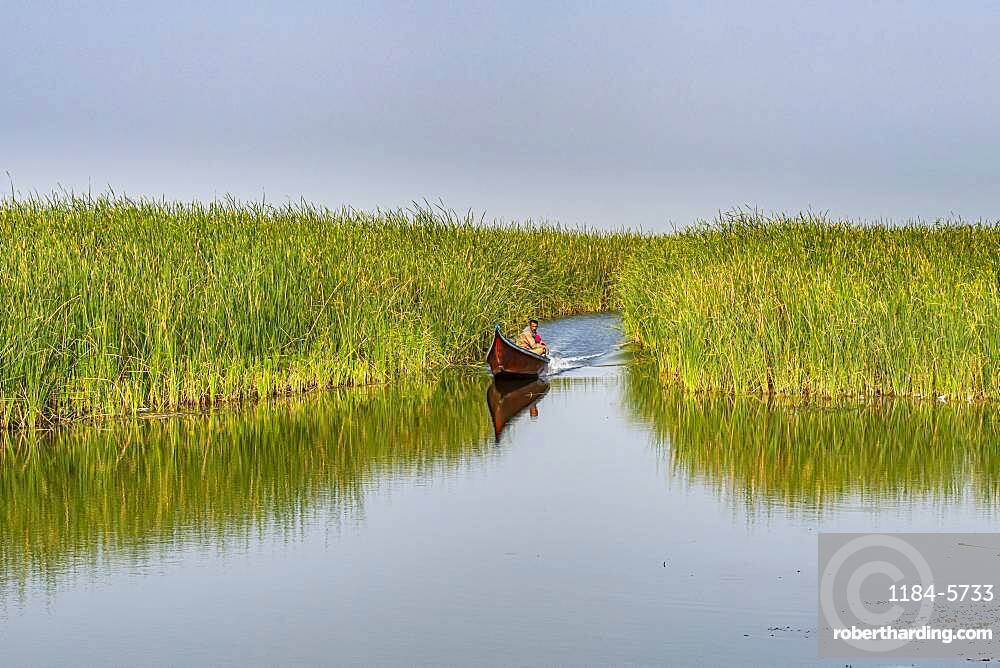 Little boat in the Mesopotamian Marshes, The Ahwar of Southern Iraq, UNESCO World Heritage Site, Iraq, Middle East