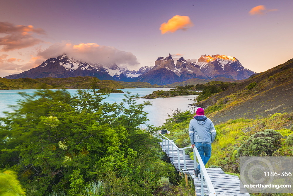 Boardwalks at Lake Pehoe, Torres Del Paine National Park, Patagonia, Chile, South America