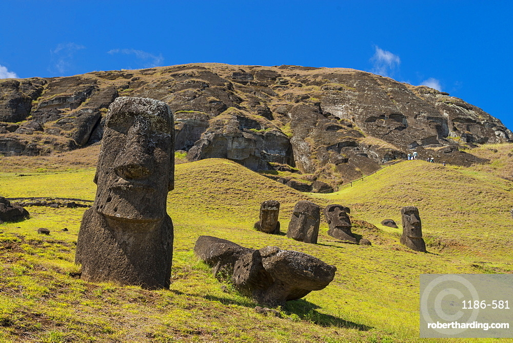 Moai heads of Easter Island, Rapa Nui National Park, UNESCO World Heritage Site, Easter Island, Chile, South America