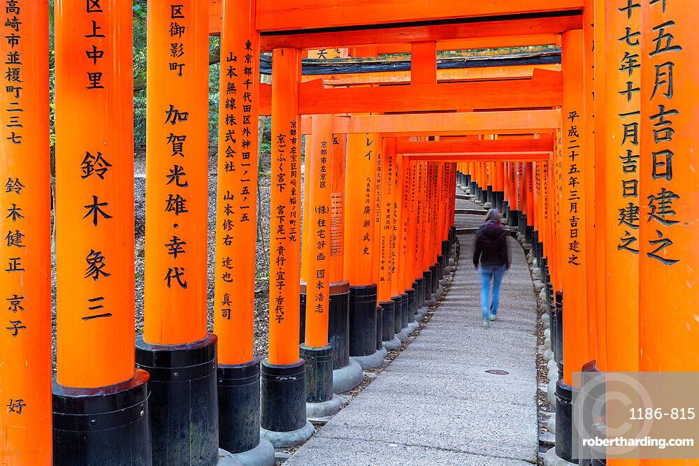 Fushimi Inari Taisha shrine and torii gates