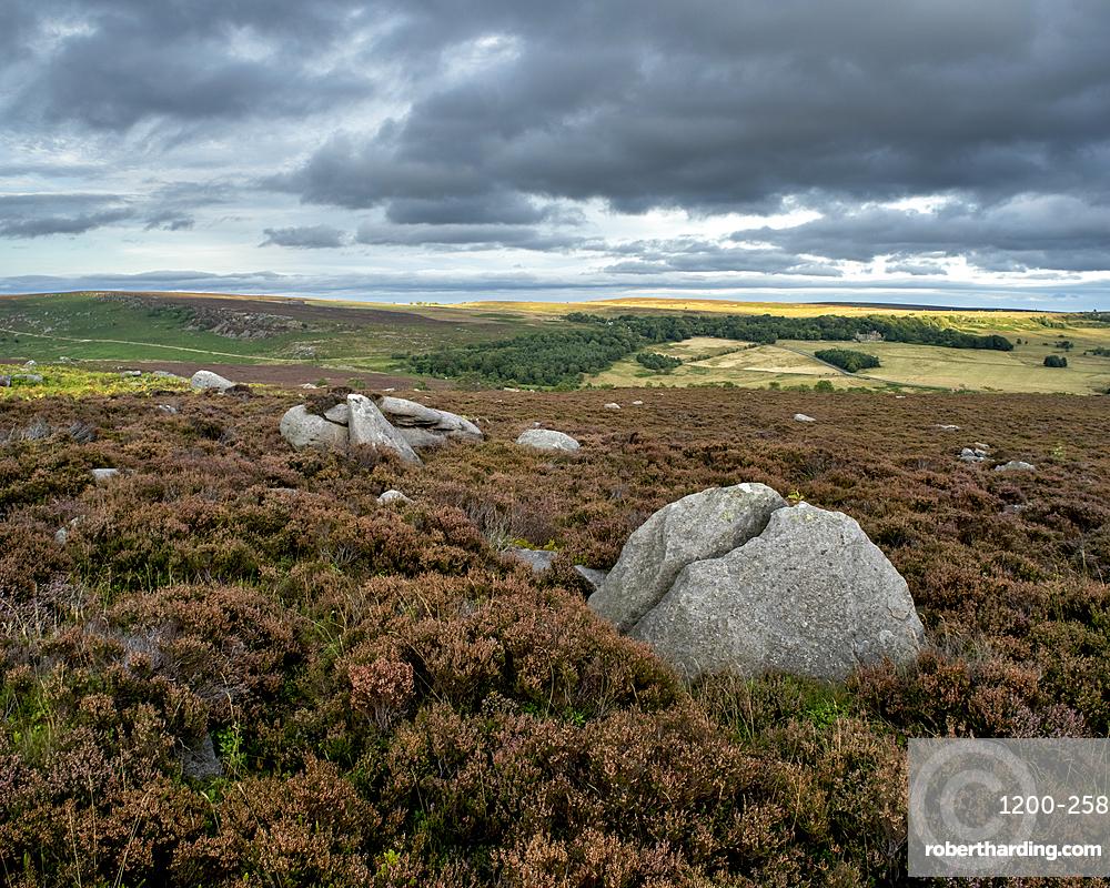 Rock and heather moorland, Surprise View, Peak District National Park, Derbyshire, England, United Kingdom, Europe