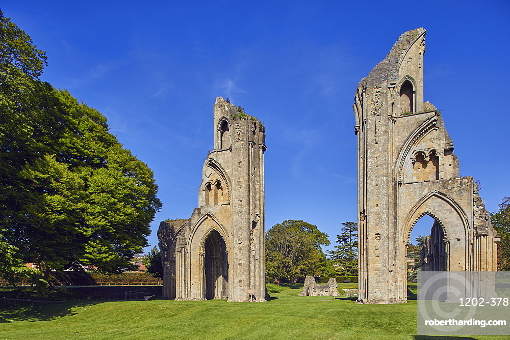 The ruins of the Great Church in the historic Glastonbury Abbey, Glastonbury, Somerset, Great Britain.