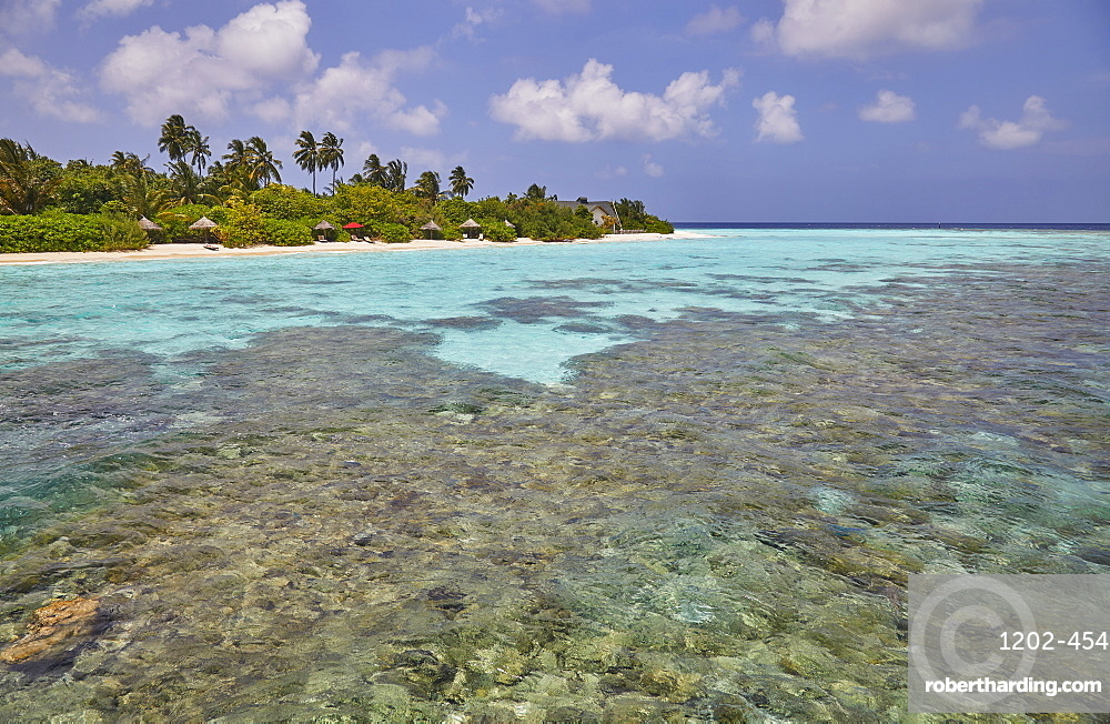 A tropical island fringing reef, just offshore from Havodda island, Gaafu Dhaalu atoll, in The Maldives, Indian Ocean, Asia