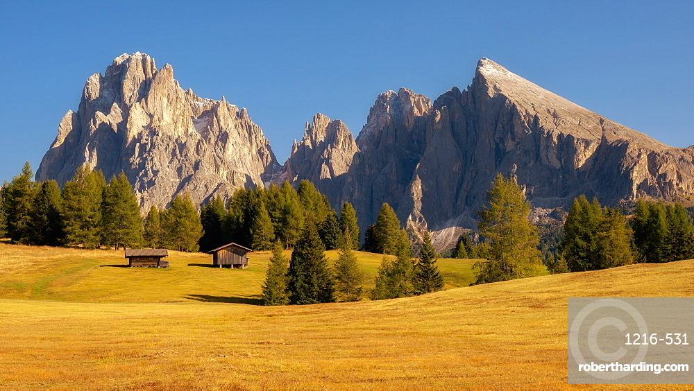 Alpe Di Siusi, Seiser Alm, South Tyrol, Dolomites, Italy, Europe