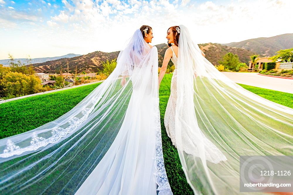 Newlyweds first look post wedding ceremony, Corona, California, United States of America, North America