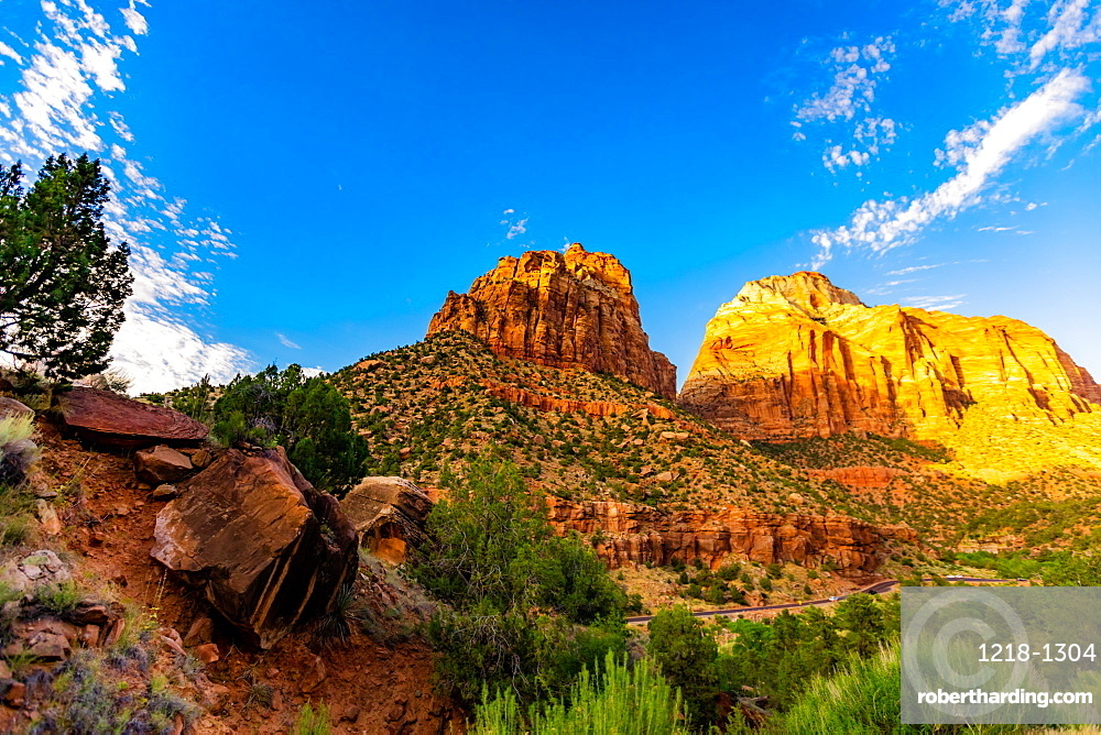 Scenery along the Canyon Overlook Trail, Zion National Park, Utah, United States of America, North America