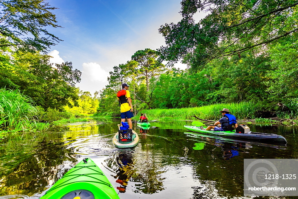 Kayaking through Cane Bayou, New Orleans, Louisiana, United States of America, North America