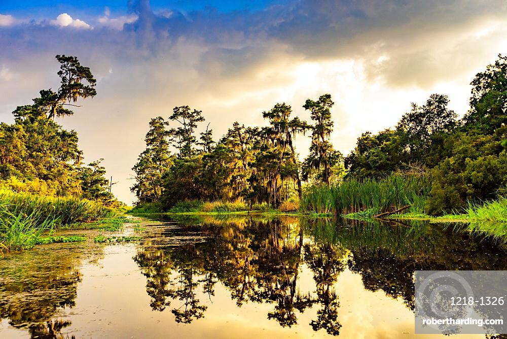 Cane Bayou, New Orleans, Louisiana, United States of America, North America