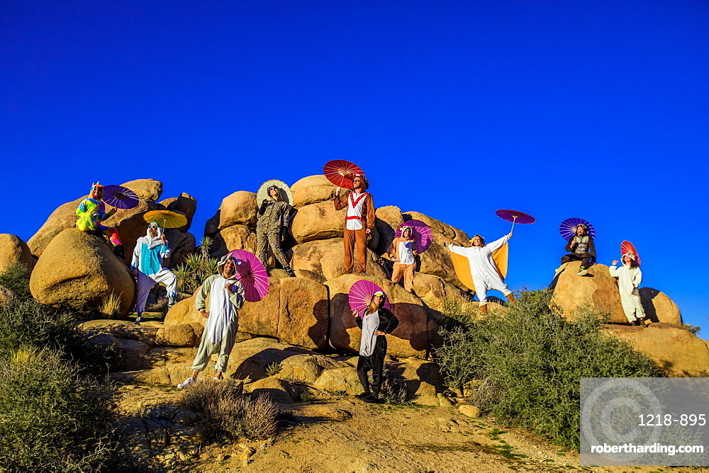 Group of friends in spirit animal onesies celebrating the new year in Joshua Tree, California, United States of America, North America
