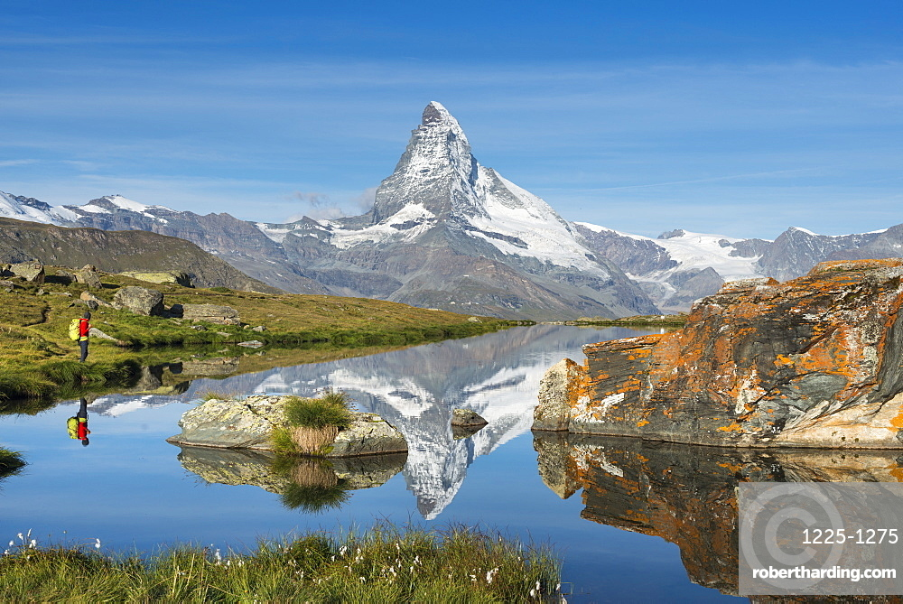 A walker hiking in the Alps takes in the view of the Matterhorn reflected in Stellisee lake at dawn, Swiss Alps, Switzerland, Europe