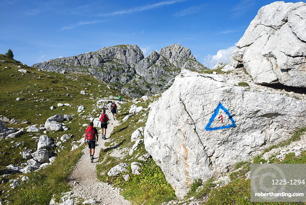 Walkers hiking through the Dolomites range of the Alps along the Alta Via 1 trekking route, Belluno, Veneto, Italy, Europe