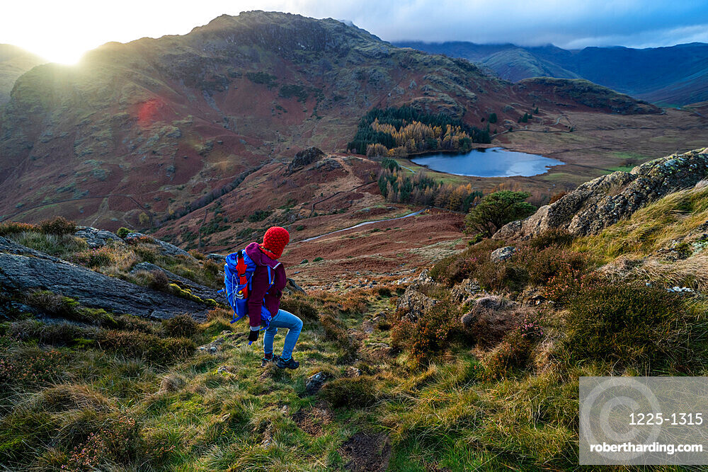 A woman hiking from Lingmoor Fell descends to Blea Tarn and Great Langdale in the English Lake Distirct