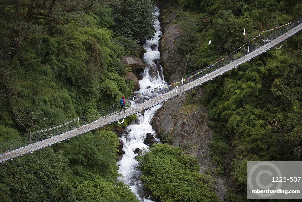 Hiking the trail between Riverside and Thulo Sypro in the Langtang Region, Nepal, Himalayas, Asia
