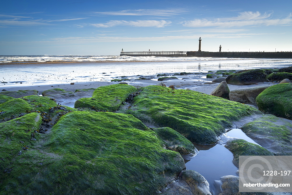 Whitby piers at low tide in winter, Whitby, North Yorkshire, Yorkshire, England, United Kingdom, Europe