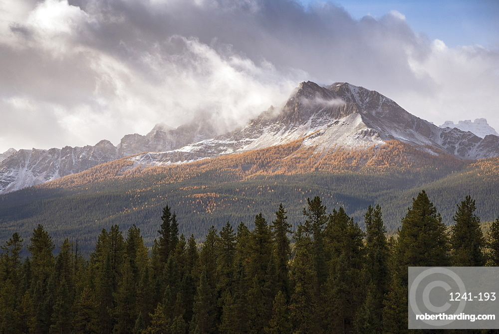 Mountain range at Morant's Curve in Autumn foliage, Banff National Park, Alberta, Canada