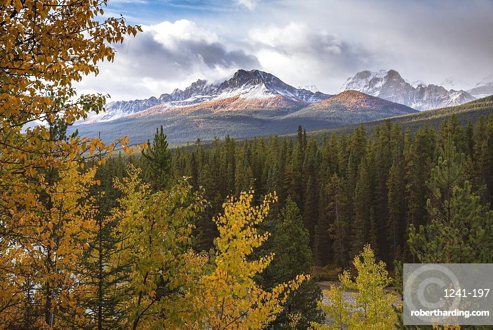 Mountain range at Morant's Curve in Autumn foliage, Banff National Park, Alberta, Canada