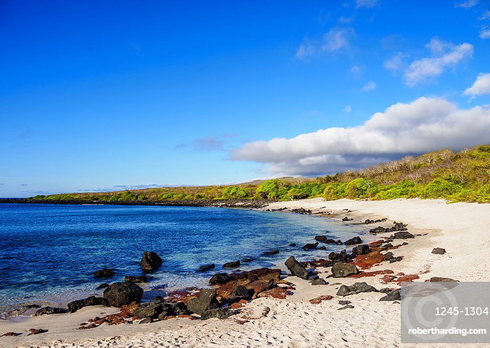 Baquerizo Beach, San Cristobal (Chatham) Island, Galapagos, UNESCO World Heritage Site, Ecuador, South America