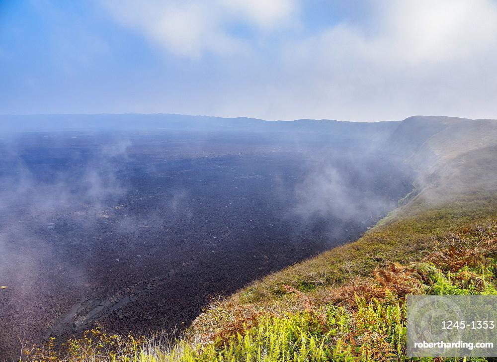 Sierra Negra Volcano, Highlands of Isabela (Albemarle) Island, Galapagos, UNESCO World Heritage Site, Ecuador, South America