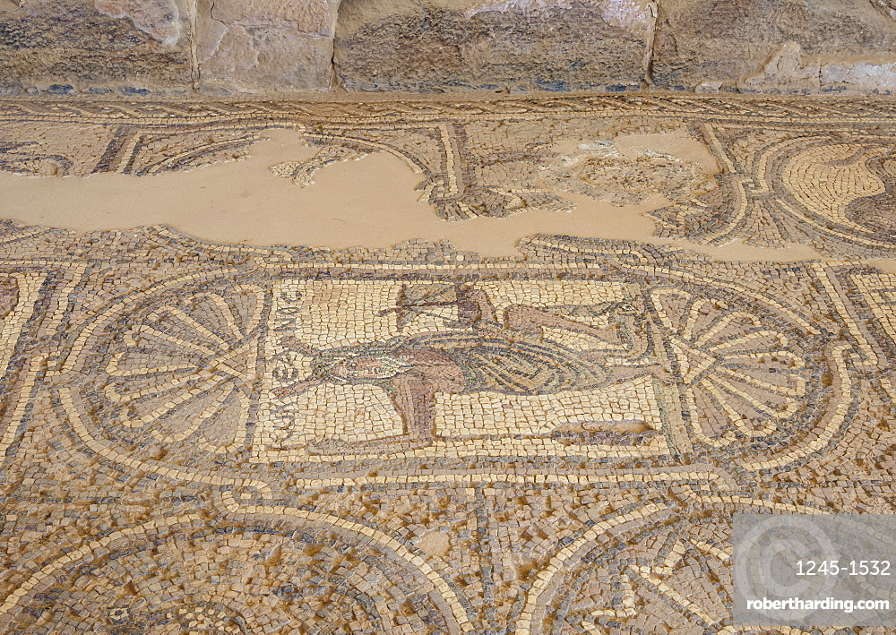 Mosaic floor of the Byzantine Church, Petra, UNESCO World Heritage Site, Ma'an Governorate, Jordan, Middle East