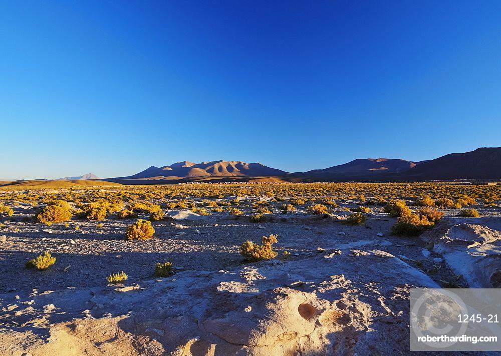 Landscape near the Villa Mar village at sunset, Nor Lipez Province, Potosi Department, Bolivia, South America