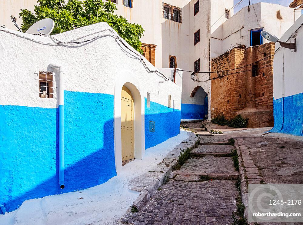 Rue Bazou, blue street in Kasbah of the Udayas, Rabat, Rabat-Sale-Kenitra Region, Morocco, North Africa, Africa