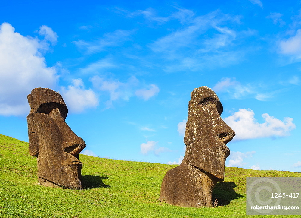 Moais at the quarry on the slope of the Rano Raraku Volcano, Rapa Nui National Park, UNESCO World Heritage Site, Easter Island, Chile, South America