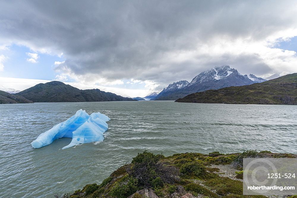 Icebergs on Lago Grey, with Cerro Paine Grande and Grey glacier in the background. Torres del Paine National Park, Chile.