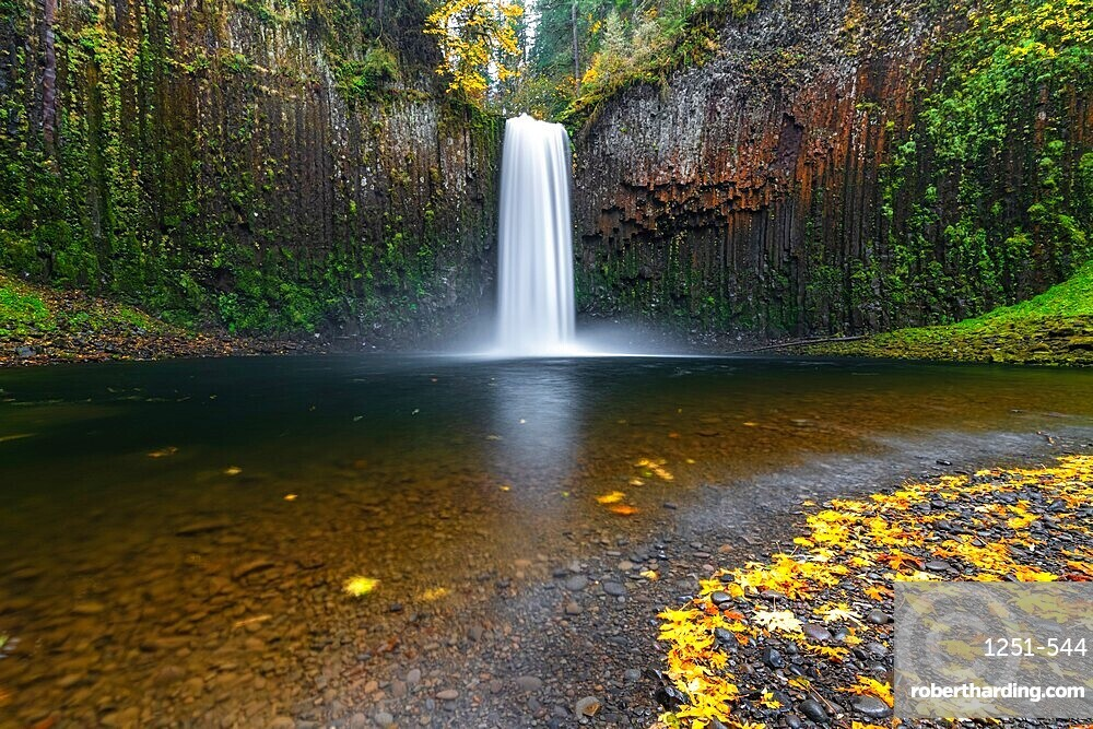 Abiqua Falls in autumn, Scotts Mills, Marion county, Oregon, United States of America, North America