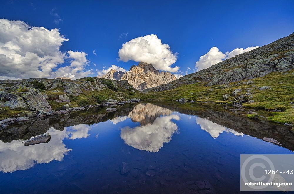 Rolle Pass, Cimon de la Pala reflected in a small lake, Dolomites, Veneto, Italy, Europe
