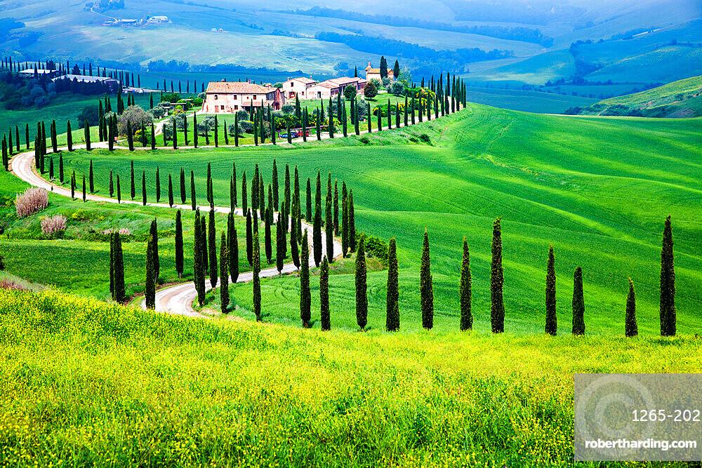 Farmhouse in green summer landscape near Crete Senesi, Tuscany, Italy, Europe