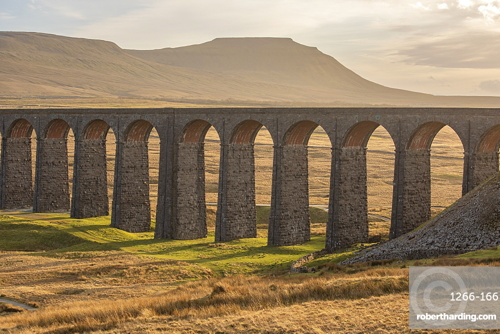View to Ingleborough and the arches of Ribblehead Viaduct on the Settle to Carlisle railway line, Yorkshire Dales, North Yorkshire, England, United Kingdom, Europe