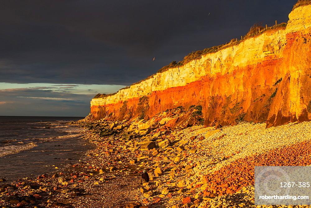 Dramatic golden hour seascape of Hunstanton cliffs with dark stormy sky, on North Norfolk coast, Norfolk, East Anglia, England, United Kingdom, Europe