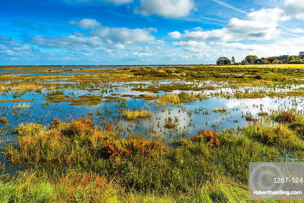 Morston salt Marshes seen from the Blakeney to Morston coastal path. Norfolk, England, UK.