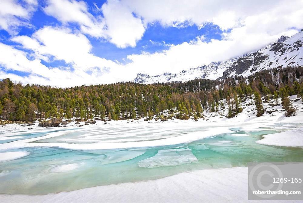 Lake of Saoseo in thaw, Saoseo Lake, Val di Campo, Val Poschiavo, Canton of Graubunden, Switzerland, Europe