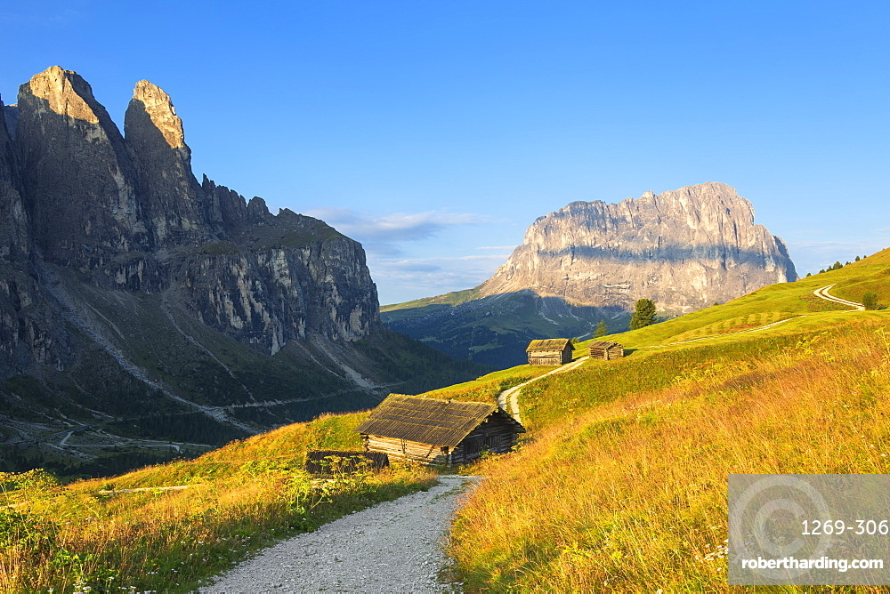 Traditional hut with Sassolungo in the background, Gardena Pass, Gardena Valley, South Tyrol, Dolomites, Italy, Europe
