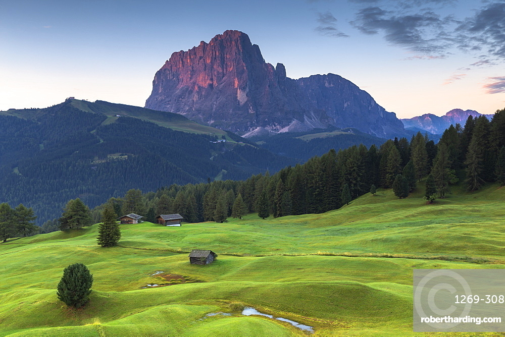 First light on Sassolungo peak, Daunei, Selva Val Gardena, Gardena Valley, South Tyrol, Dolomites, Italy, Europe
