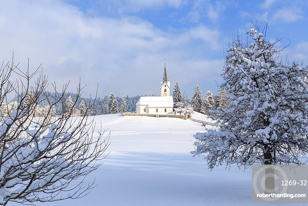 The sun illuminates the church of Versam after a snowfall, Versam, Safiental, Surselva, Graubunden, Switzerland, Europe