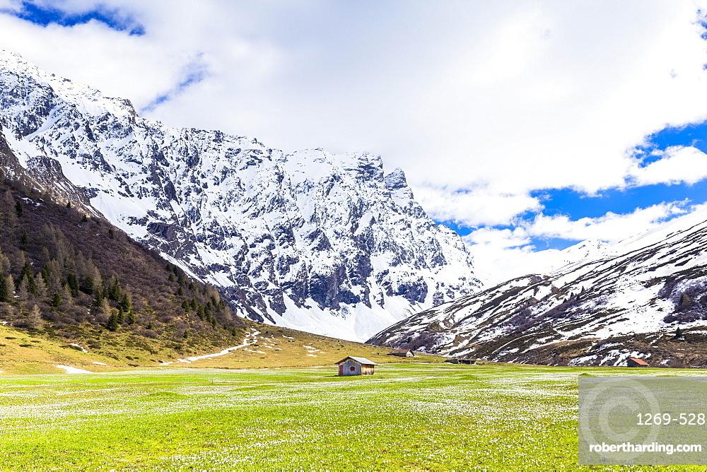 Lonely hut in Val Radons (Radons Valley), Albula region, Canton of Grisons (Graubunden), Switzerland, Europe