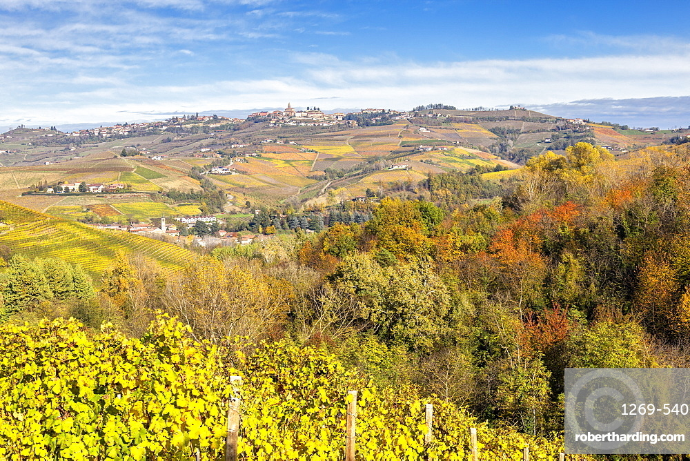 Village of Diano d'Alba during autumn. Barolo wine region, Langhe, Piedmont, Italy, Europe.