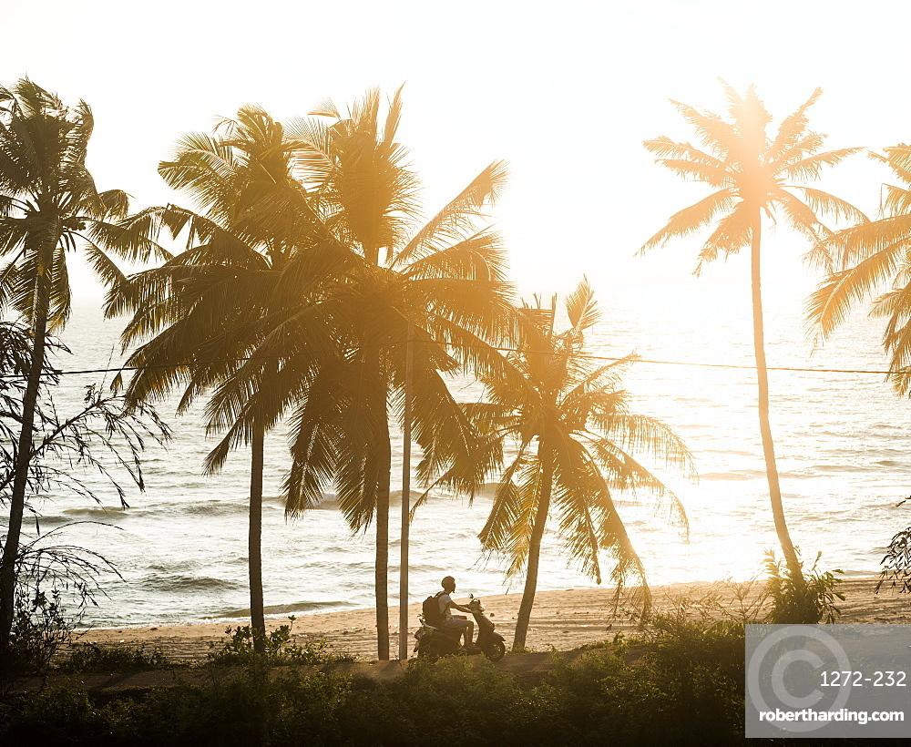 Tourist on a moped at sunset, Varkala, Kerala, India, Asia