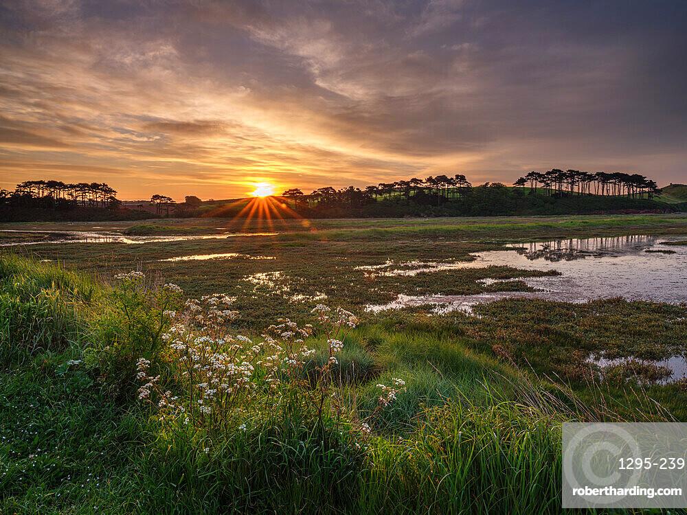 Sunrise across the salt marshes of the River Otter at Budleigh Salterton, Devon, UK
