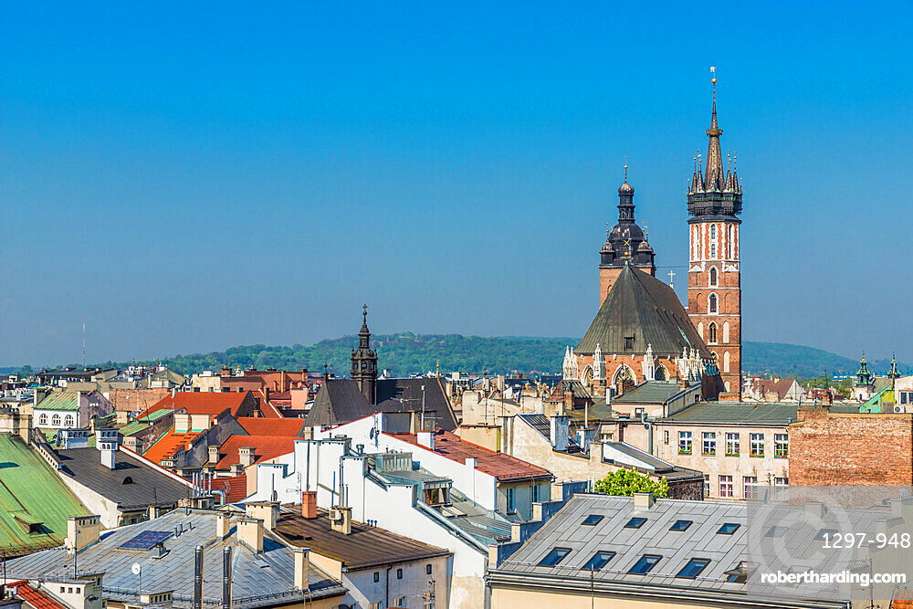 An elevated view towards St Marys Basilica over the medieval old town, a UNESCO World Heritage site, in Krakow, Poland, Europe.