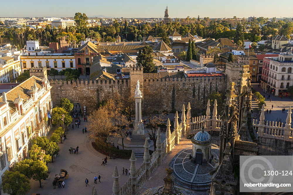 View of the historic center of Seville from the top of the Cathedral of Seville, Seville, Andalucia, Spain, Europe