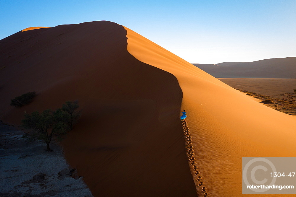 Drone shot of model Climbing Dune 13, Sossusvlei, Namibia, Africa