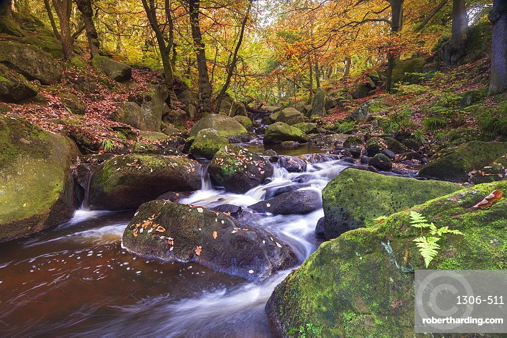 Flowing river and autumn colours at Padley Gorge, Peak District National Park, Derbyshire