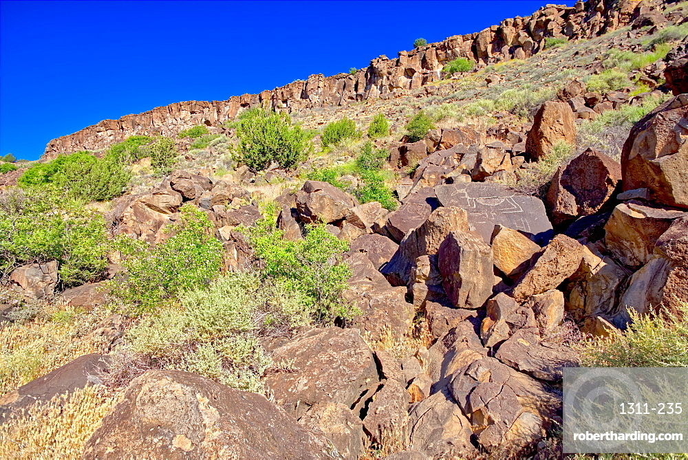 Petroglyph covered boulders on a slope in the Upper Verde River Wildlife Area in Paulden AZ.